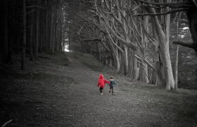 Running Children in Dark Forest near Moss Landing