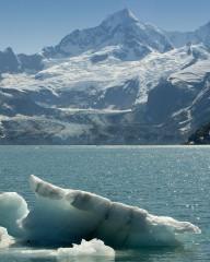 Iceberg, John Hopkins Inlet
